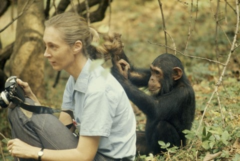 Jane Goodall at DAR Constitution Hall